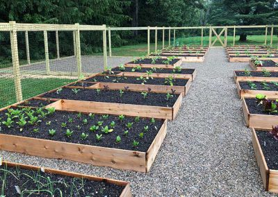 Green Giant LC Raised Bed Gardens